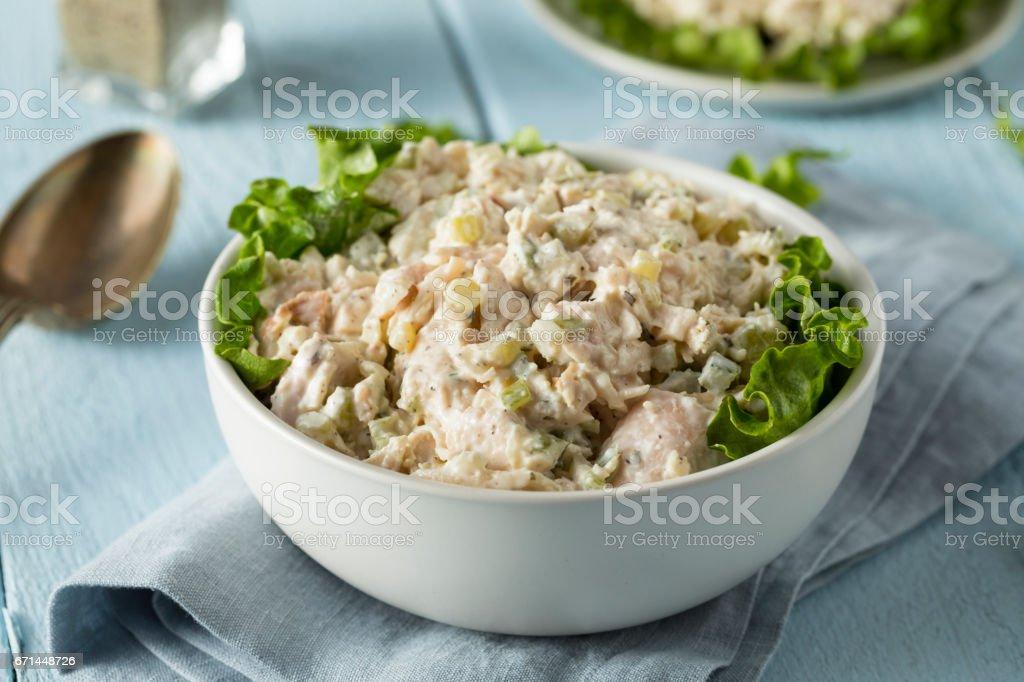 Homemade Healthy Chicken Salad stock photo