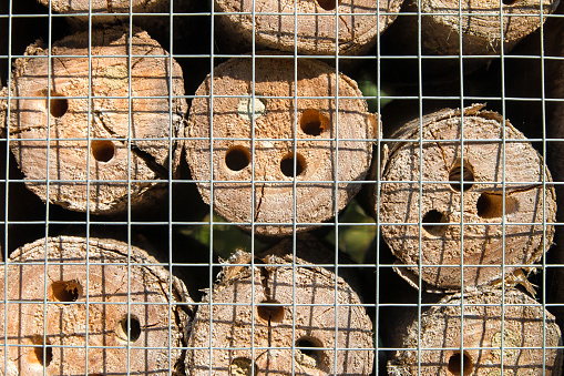 Homemade insects hotel house close-up in garden with logs