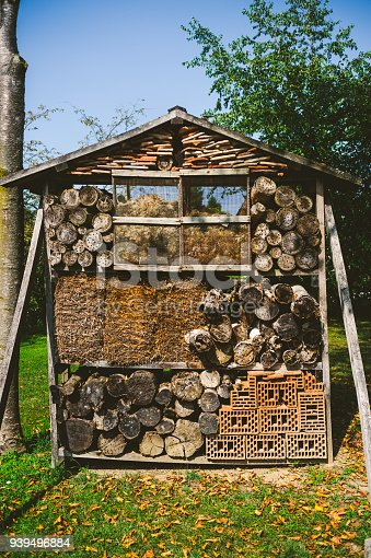 Pile of firewood and some bricks
