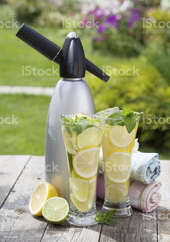 Homemade lemonade and siphon royalty-free stock photo