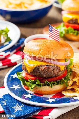 531564432 istock photo Homemade Memorial Day Hamburger Picnic 531564192