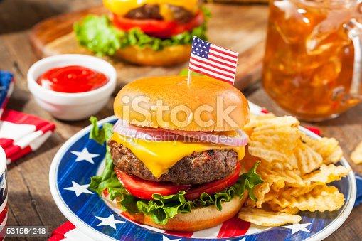 531564432 istock photo Homemade Memorial Day Hamburger Picnic 531564248