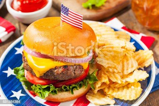 istock Homemade Memorial Day Hamburger Picnic 531564384