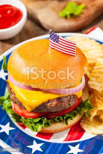 531564432 istock photo Homemade Memorial Day Hamburger Picnic 531564402