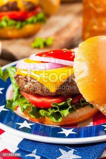 531564432 istock photo Homemade Memorial Day Hamburger Picnic 531564486