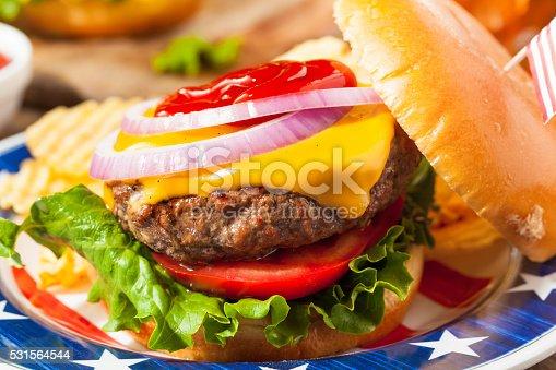 531564432 istock photo Homemade Memorial Day Hamburger Picnic 531564544