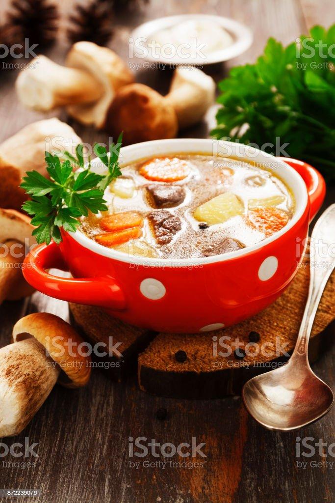 Homemade mushroom soup stock photo