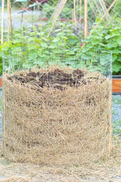 정원에서 만든 유기 비료 스톡 사진