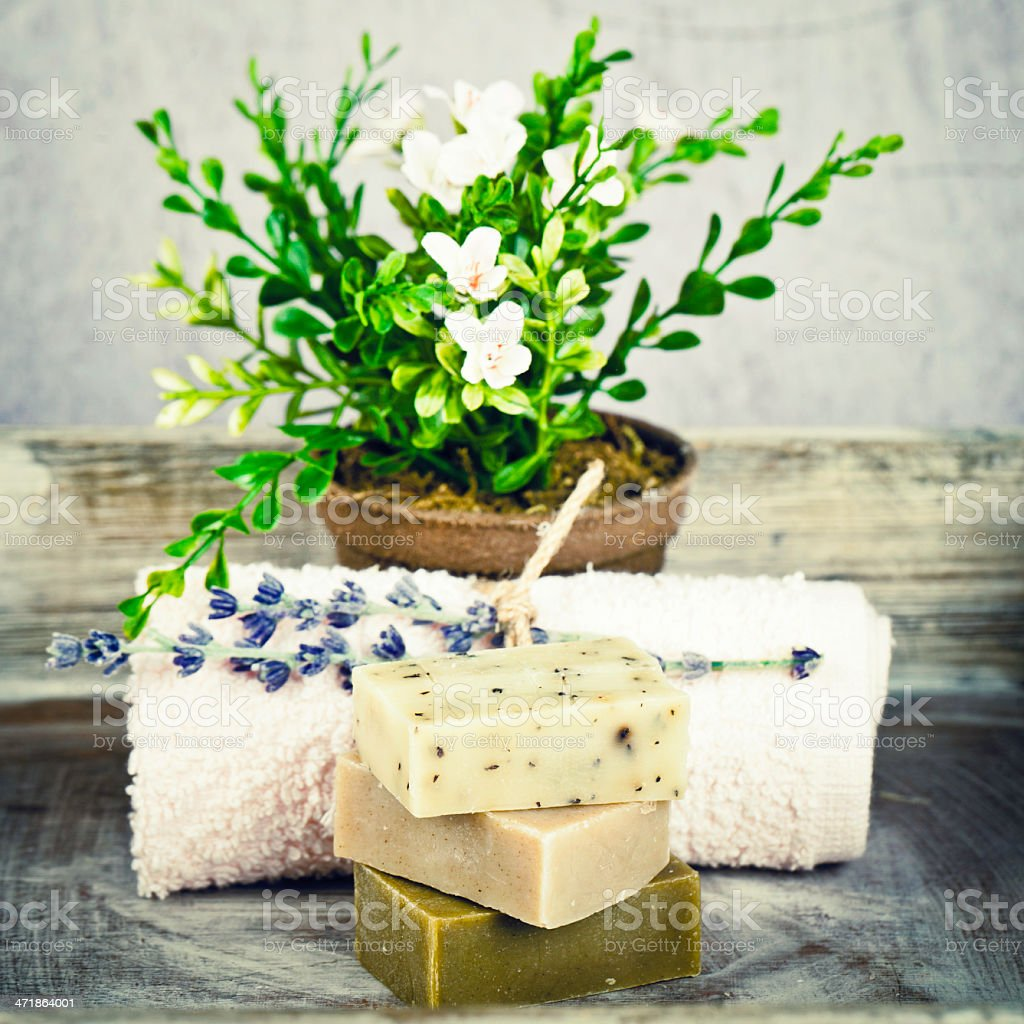 Homemade Organic Soap and Plant royalty-free stock photo