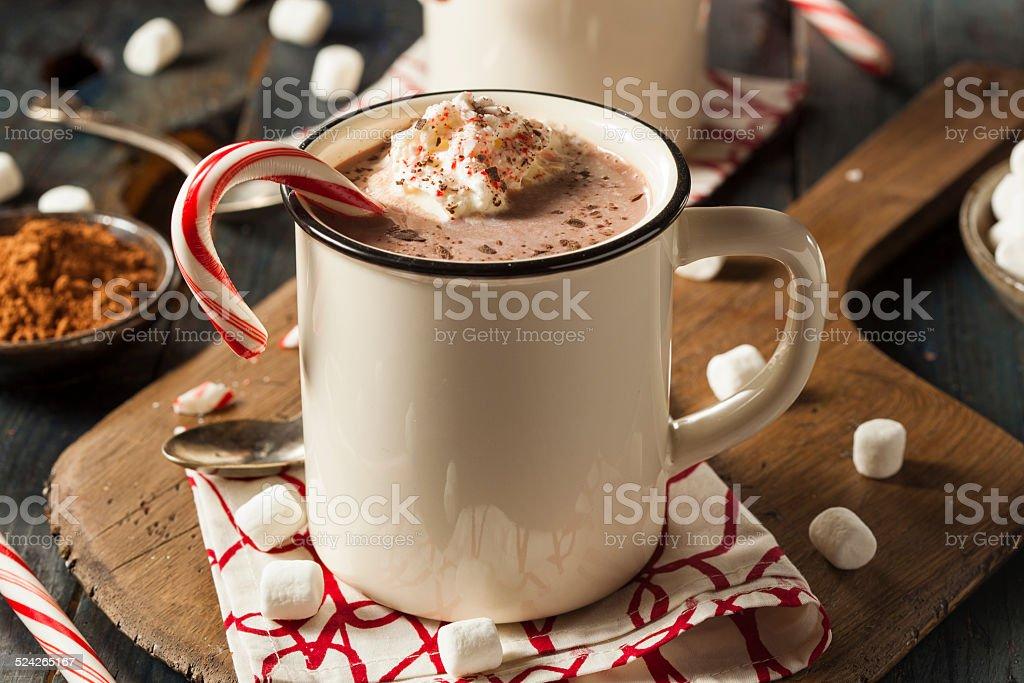 Homemade Peppermint Hot Chocolate stock photo