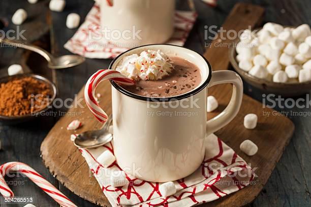 Homemade Peppermint Hot Chocolate Stockfoto en meer beelden van Alcohol