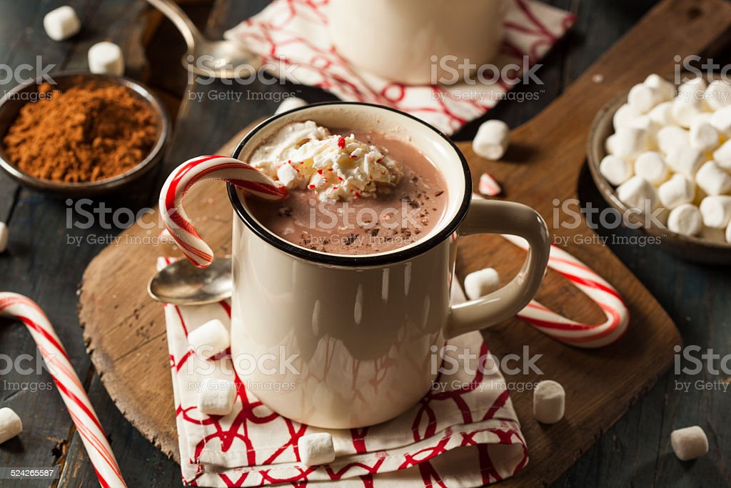 Homemade Peppermint Hot Chocolate stock photo