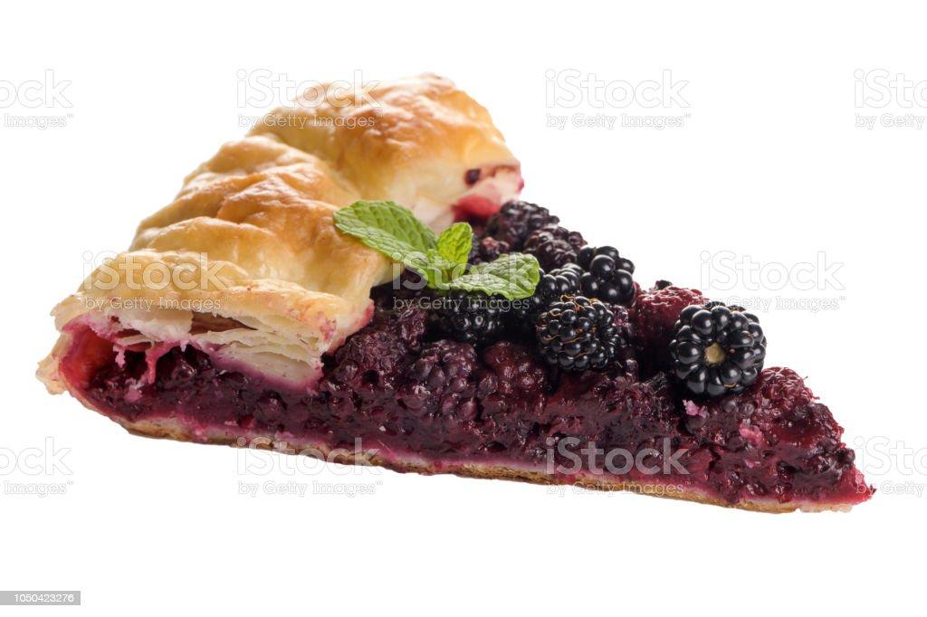 Pastel de carne casero  - foto de stock