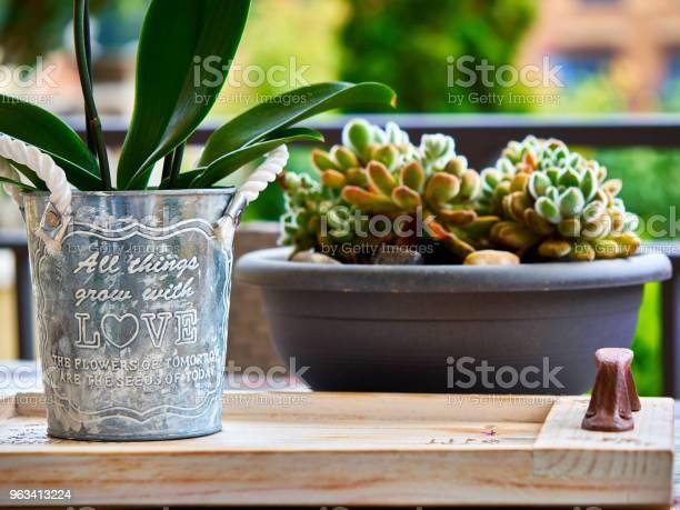 Domowy Garnek Z Wiadomością Miłosną I Kaktusem W Tle - zdjęcia stockowe i więcej obrazów Sztych