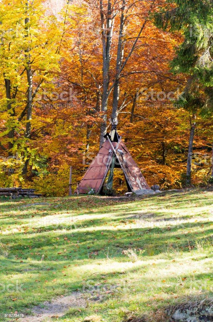 Homemade shelter from the rain. Homemade gazebo. Shelter in the forest. stock photo