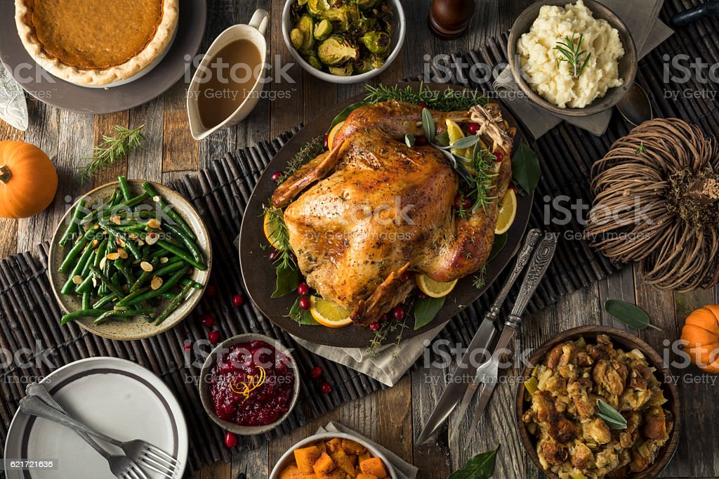 Homemade Thanksgiving Turkey Dinner - foto de stock