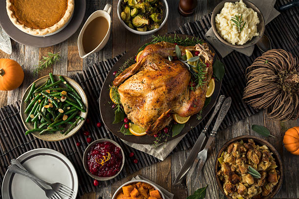 Homemade Thanksgiving Turkey Dinner - foto stock