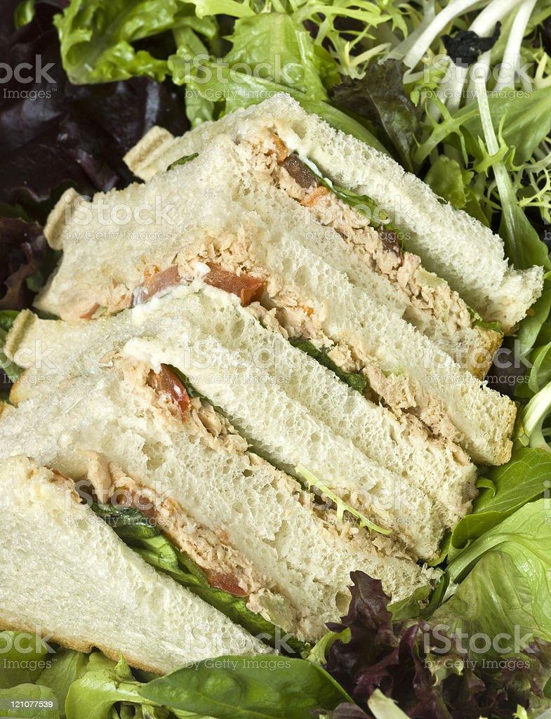 Homemade Tuna Salad Sandwich stock photo