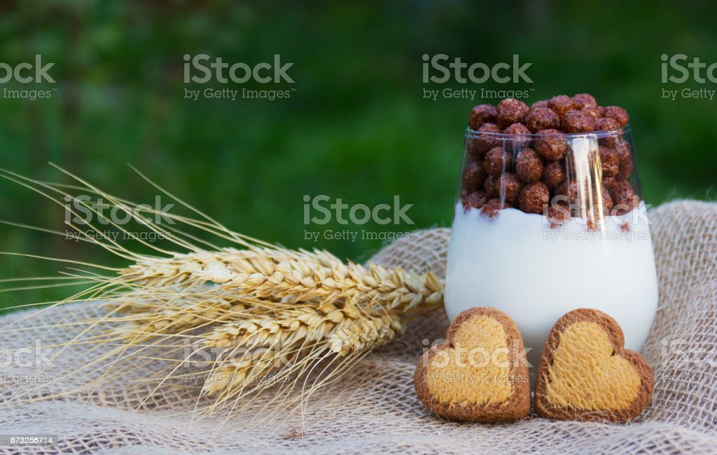 Homemade yogurt with chocolate balls and biscuits. Natural grasses. Romantic breakfast. Cookies in the shape of hearts. Romantic concept stock photo