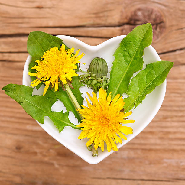 Homeopathy And Cooking With Dandelion Stock Photo - Download