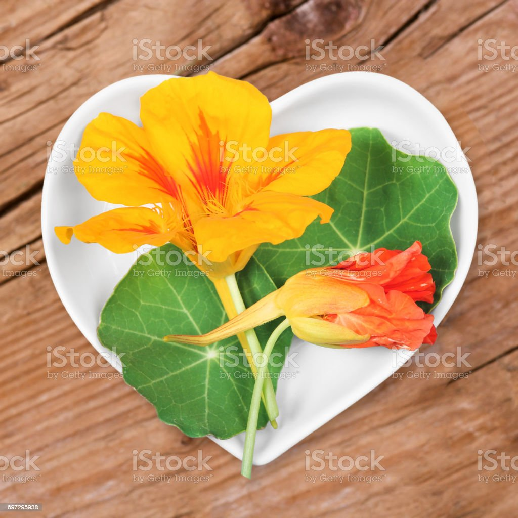 Homeopathy and cooking with nasturtium royalty-free stock photo