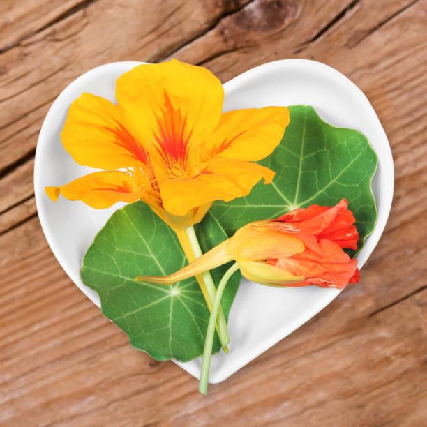 homeopathy and cooking with nasturtium - nasturtium stock photos and pictures
