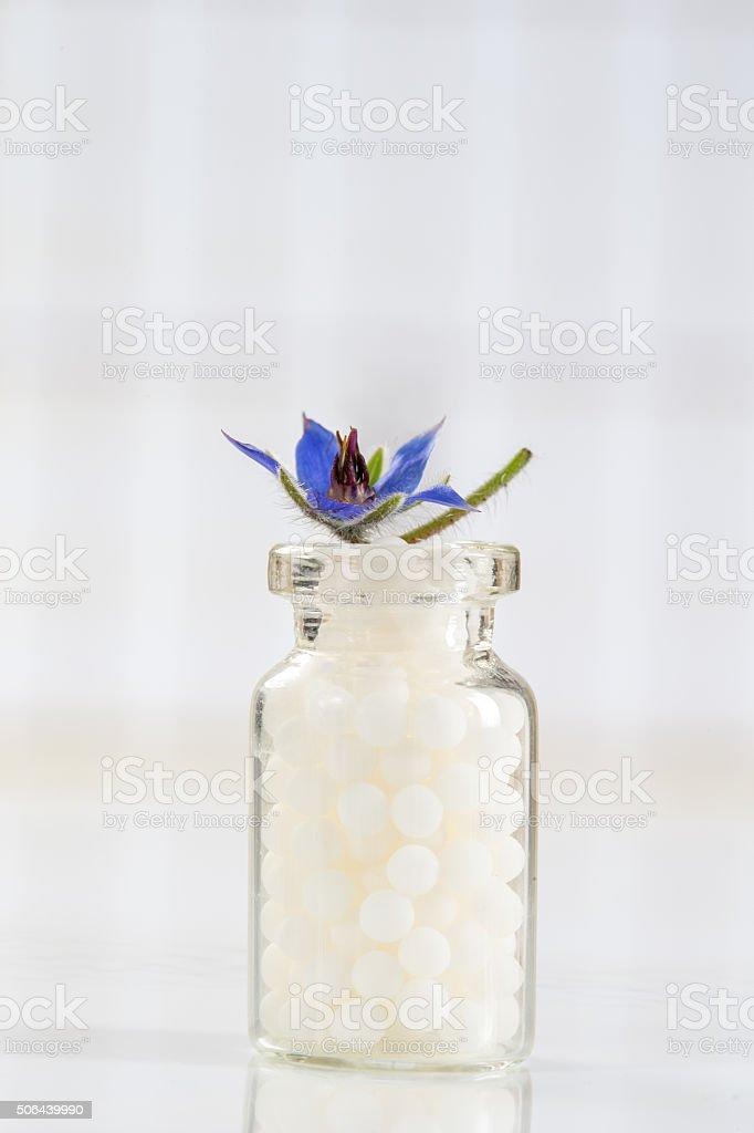 Borragine Omeopatia globuli con fiori - foto stock