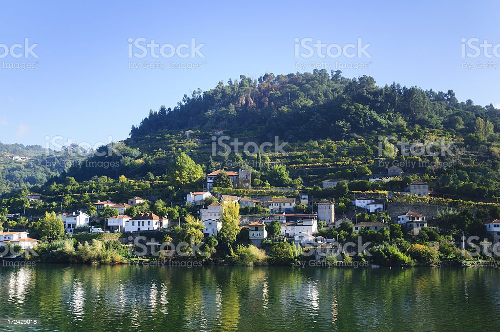 Homes along shore of the Douro River, Portugal royalty-free stock photo