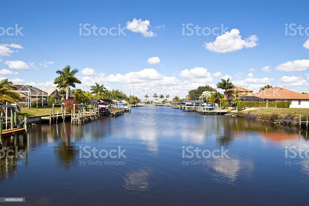 Homes at a Tropical Freshwater Canal with an Alligator stock photo