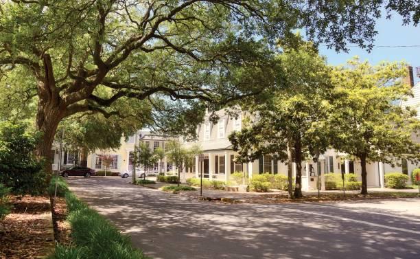 Homes, Savannah, Georgia. – Foto
