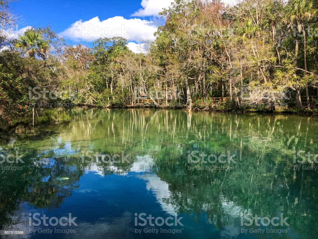 Homosassa cloud reflection stock photo