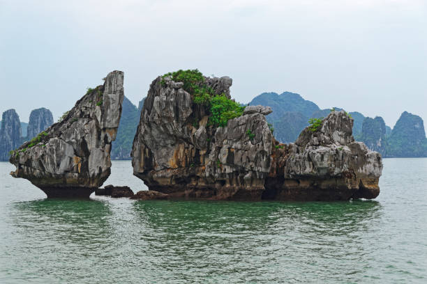 Hon Ga Choi Island (Cock and Hen Island) located in Halong bay, Vietnam stock photo