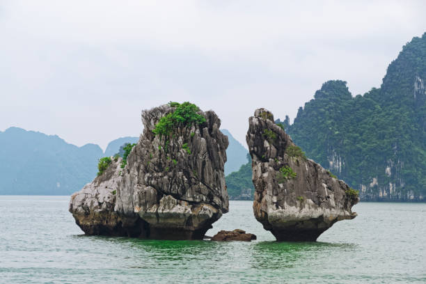 Hon Ga Choi Island (Fighting Cocks Island), or Trong Mai Island (Cock and Hen Island) in Halong bay, Vietnam stock photo