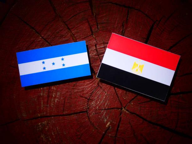 bandera de honduras con la bandera egipcia sobre un tocón de árbol aislado - bandera de honduras fotografías e imágenes de stock