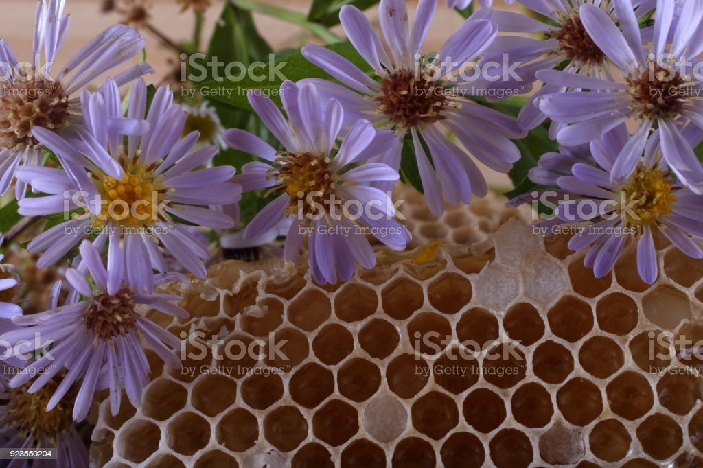 Honey and flowers on table stock photo