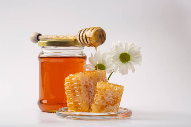 Honey background. Sweet honey in the comb. Fresh honey in a glass jar, honeycombs, honey spoon and white flowers on a light background. stock photo