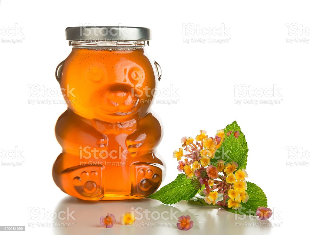 Honey Bear and Branch With Flowers Isolated on White. foto