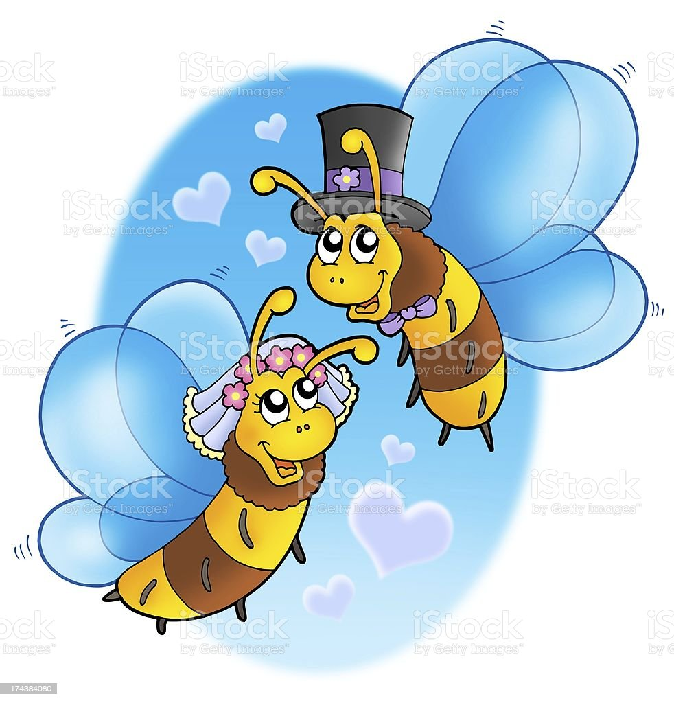 Honey bees wedding on sky stock photo