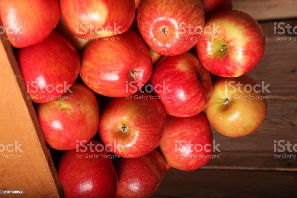 Honey Crisp Apples stock photo