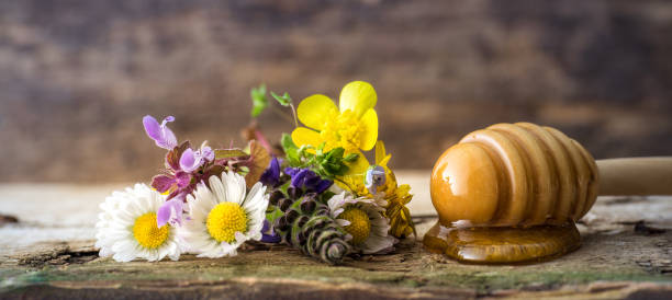 Honey - Flowers and wooden spoon stock photo