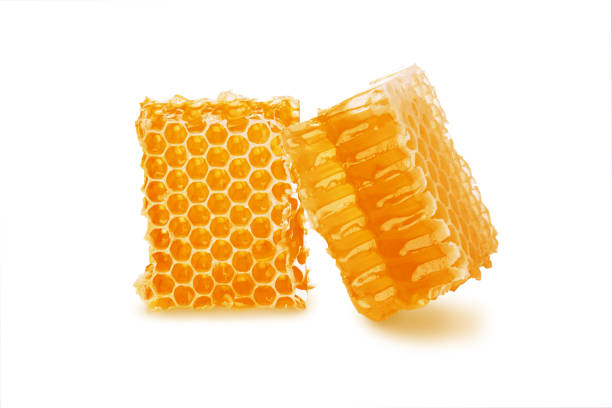 honey in honeycomb two pieces isolated on white background - honeycomb imagens e fotografias de stock