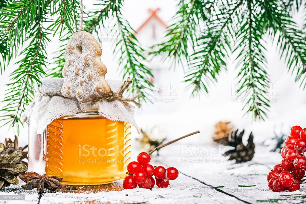 Honey under christmas tree stock photo