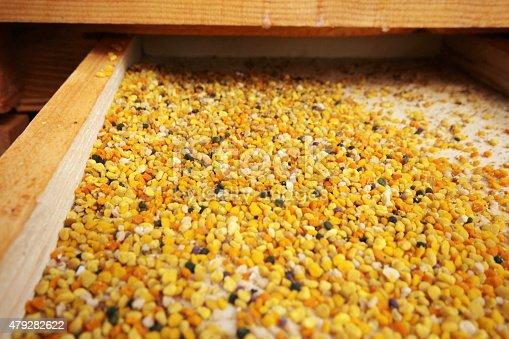 istock Honeybee pollen 479282622
