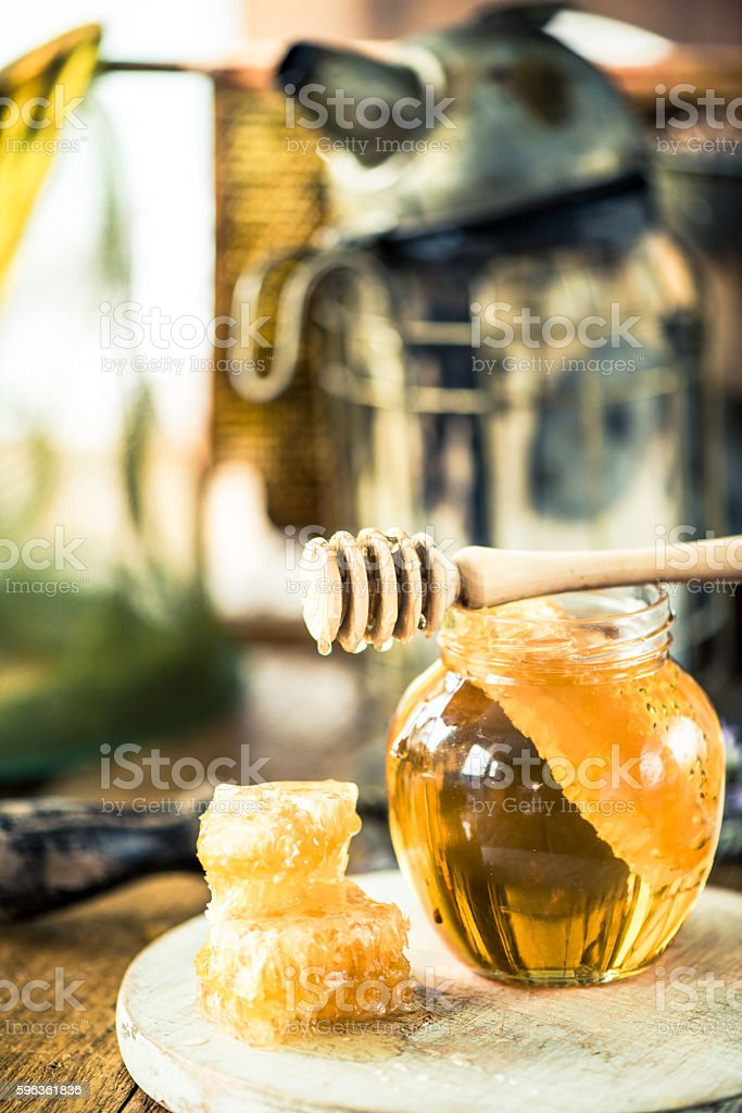 Honeycomb and fresh flower honey royalty-free stock photo