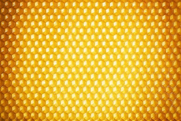 fundo de favo de mel - honeycomb imagens e fotografias de stock