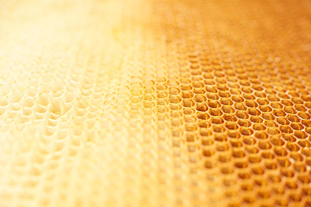 Honeycomb background stock photo
