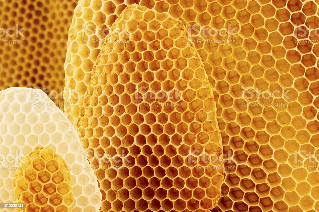 Bienenwaben Hintergrund – Foto