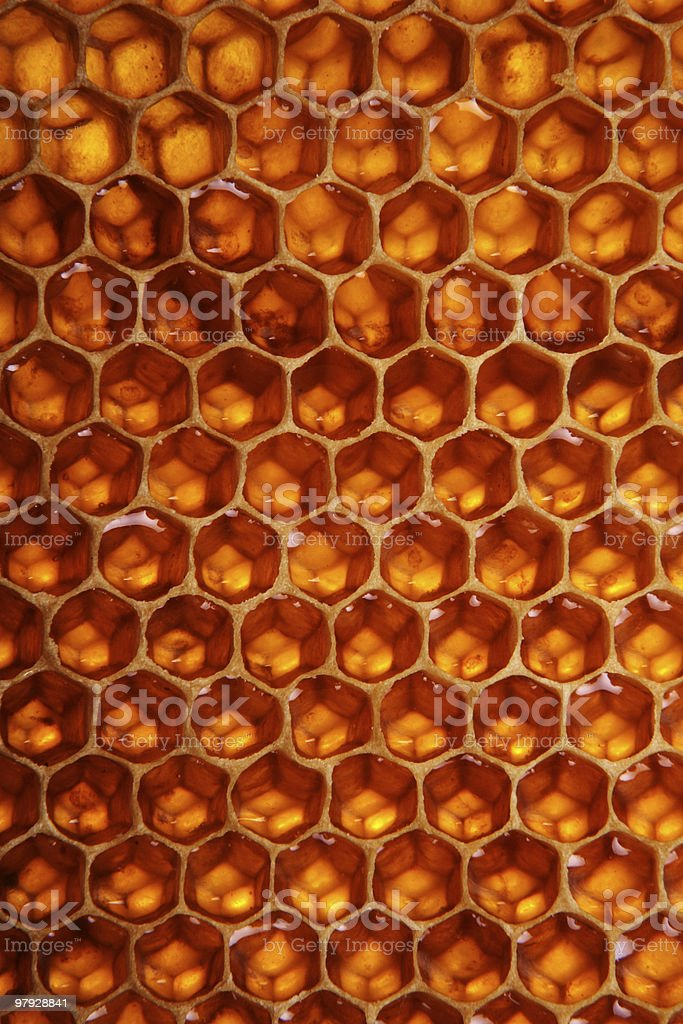 Honeycomb background royalty-free stock photo