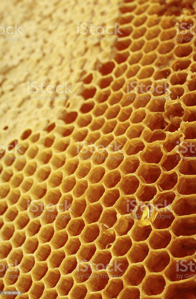 Honeycomb background royalty-free stock photo