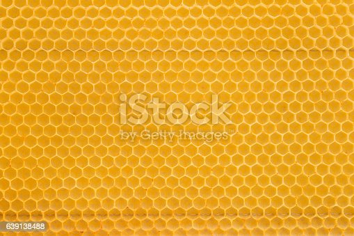 Detail picture of a bright yellow honeycomb. Without honey.